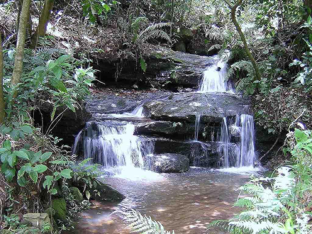 Ybycuí National Park, Paraguay - by Mil va:Wikimedia