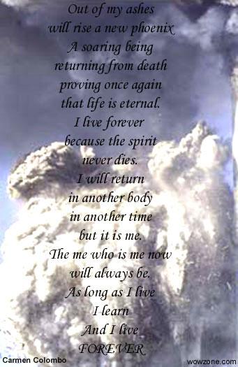 Phoenix Rising Original Poem By Carmen Colombo Wowzonecom Dont Let It Become Author