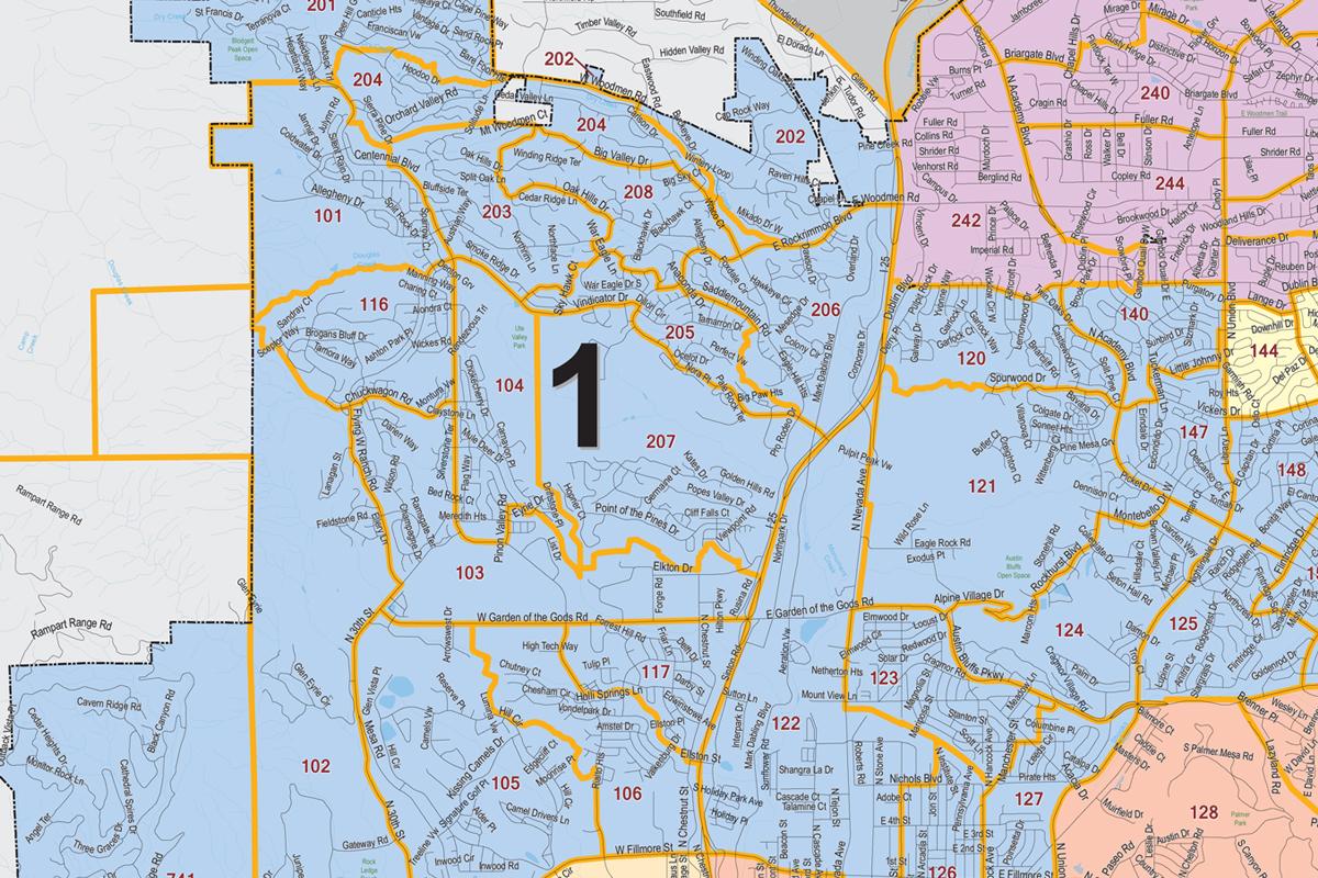 Colorado Springs City Council D1