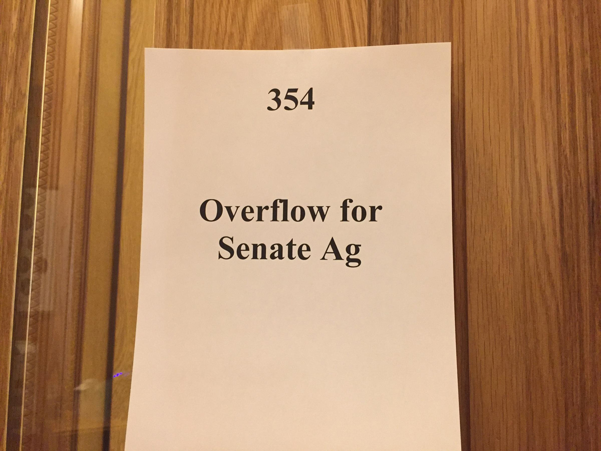 """Senate Bill 35's committee hearing was so packed that an overflow room was arranged. The bill has consistently been listed as one of the """"most accessed bills"""" on the Colorado General Assembly website."""