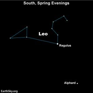 If you're in the Northern Hemisphere - and you stand facing southward on a spring evening - Leo will be over your head. Alphard will be to the lower right of Regulus, Leo's brightest star.