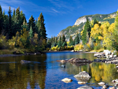 <p>Roosevelt National Forest in Colorado</p>