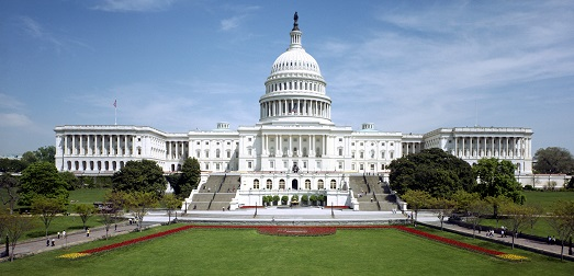 <p>The lawn of the U.S. Capitol in Washington, D.C., is pictured above.</p>