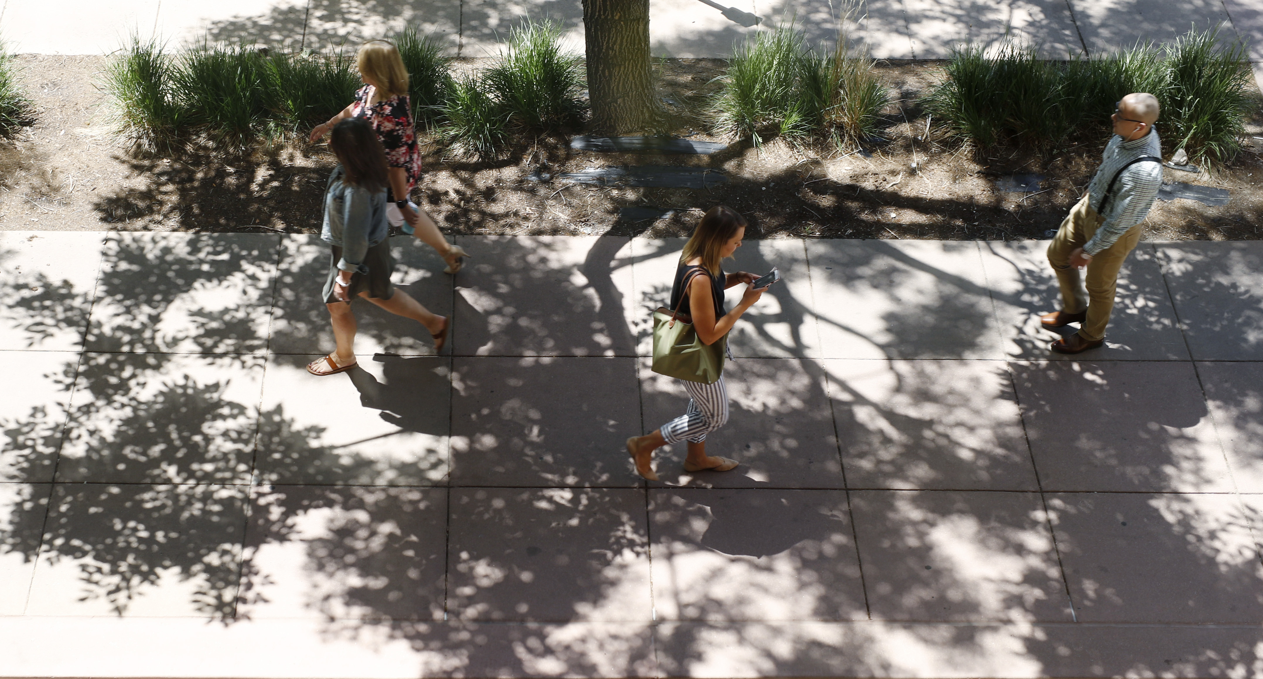 <p>Pedestrians move along the sidewalk shaded by the shadow of a tree as temperatures soar above 90 degrees in Denver in June 2018.</p>