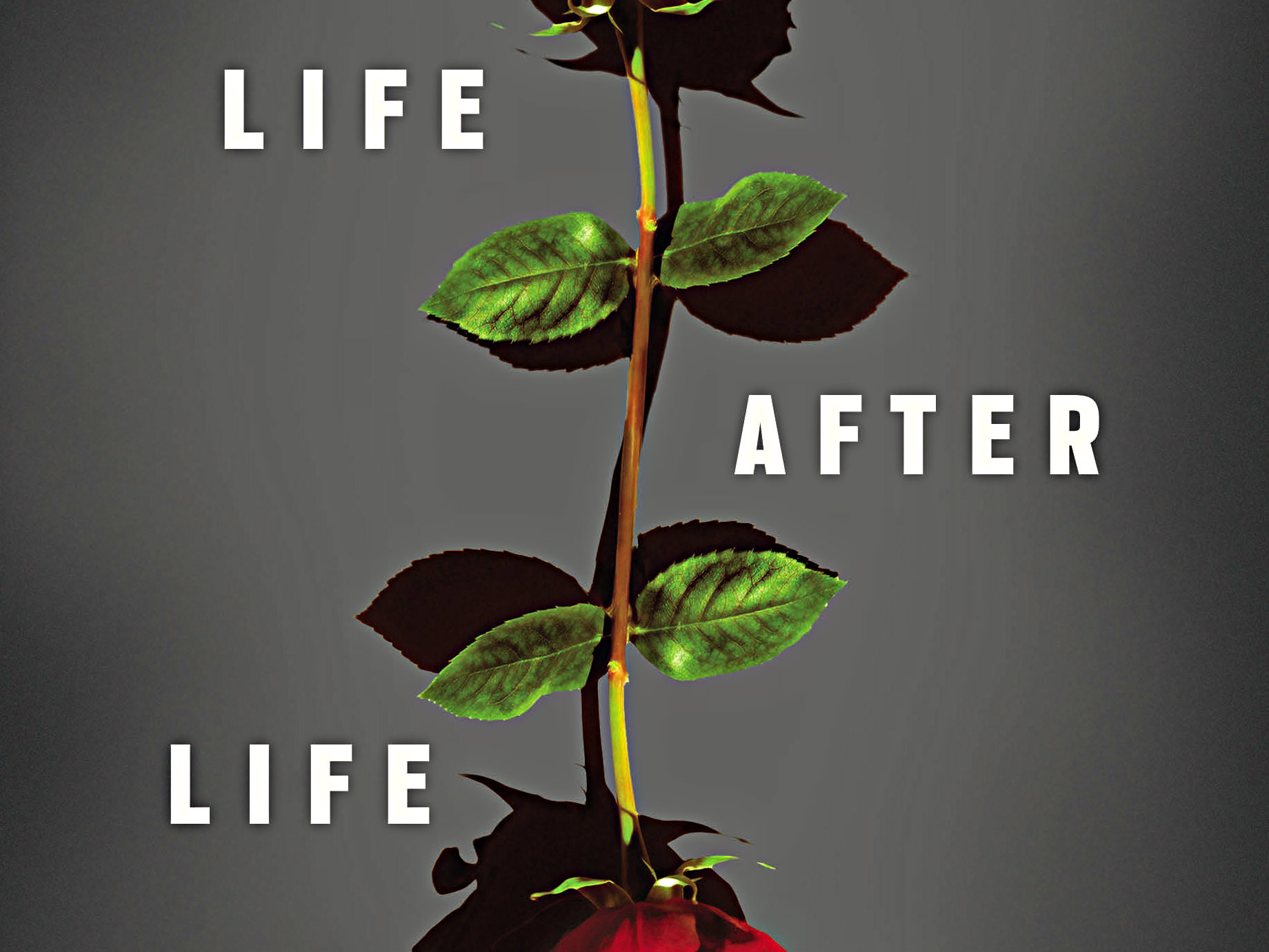"<p>""Life After Life"" by Scottish author Kate Atkinson</p>"