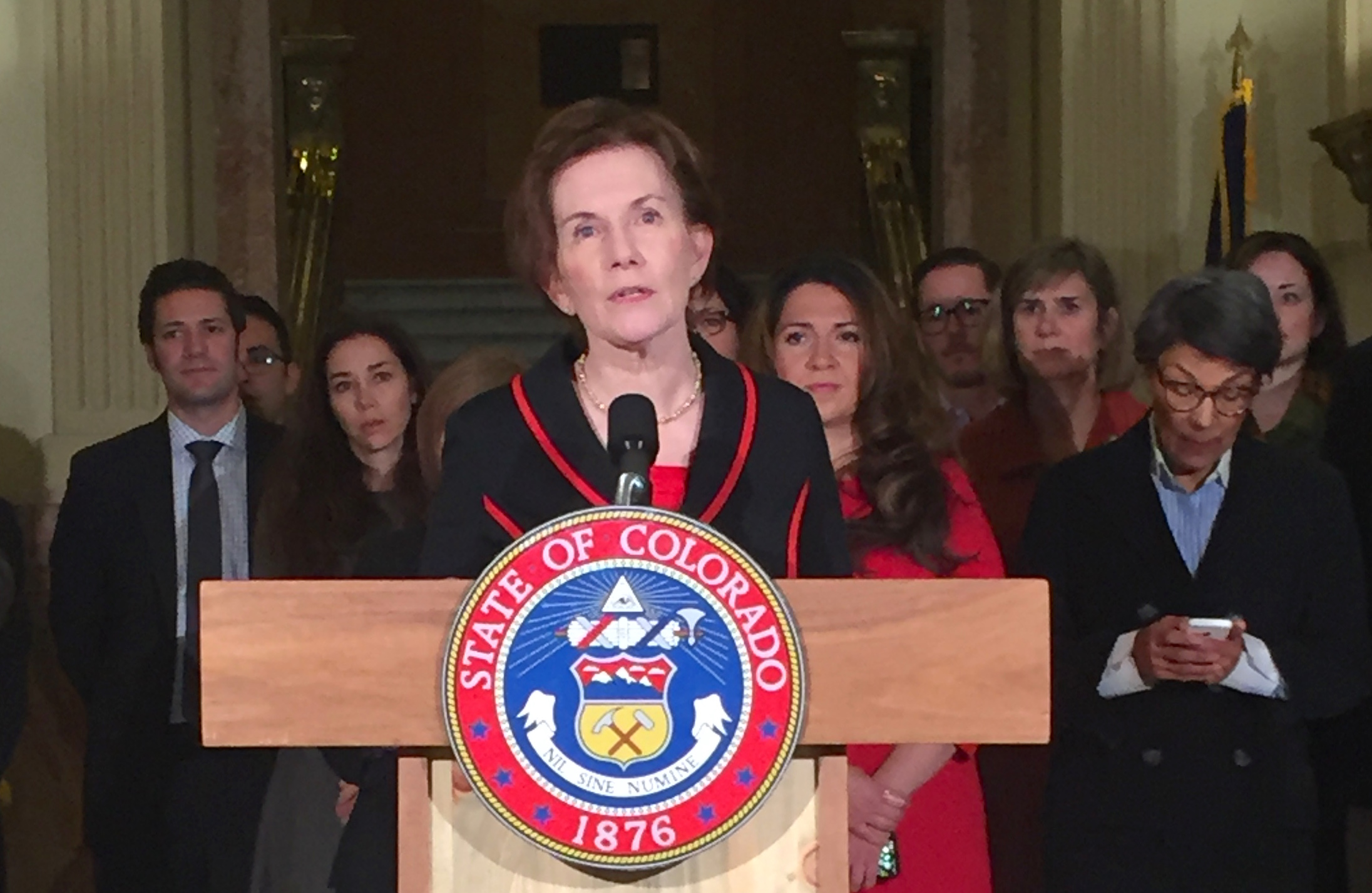 <p>Donna Lynne speaking at a press conference at the state Capitol on March 23, 2016.</p>