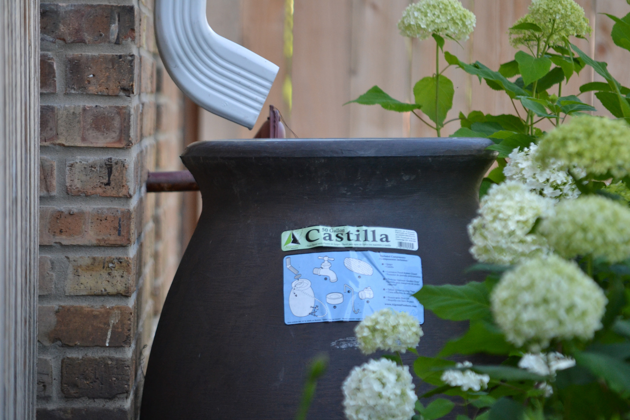 <p>A perfectly legal rain barrel in Chicago.</p>