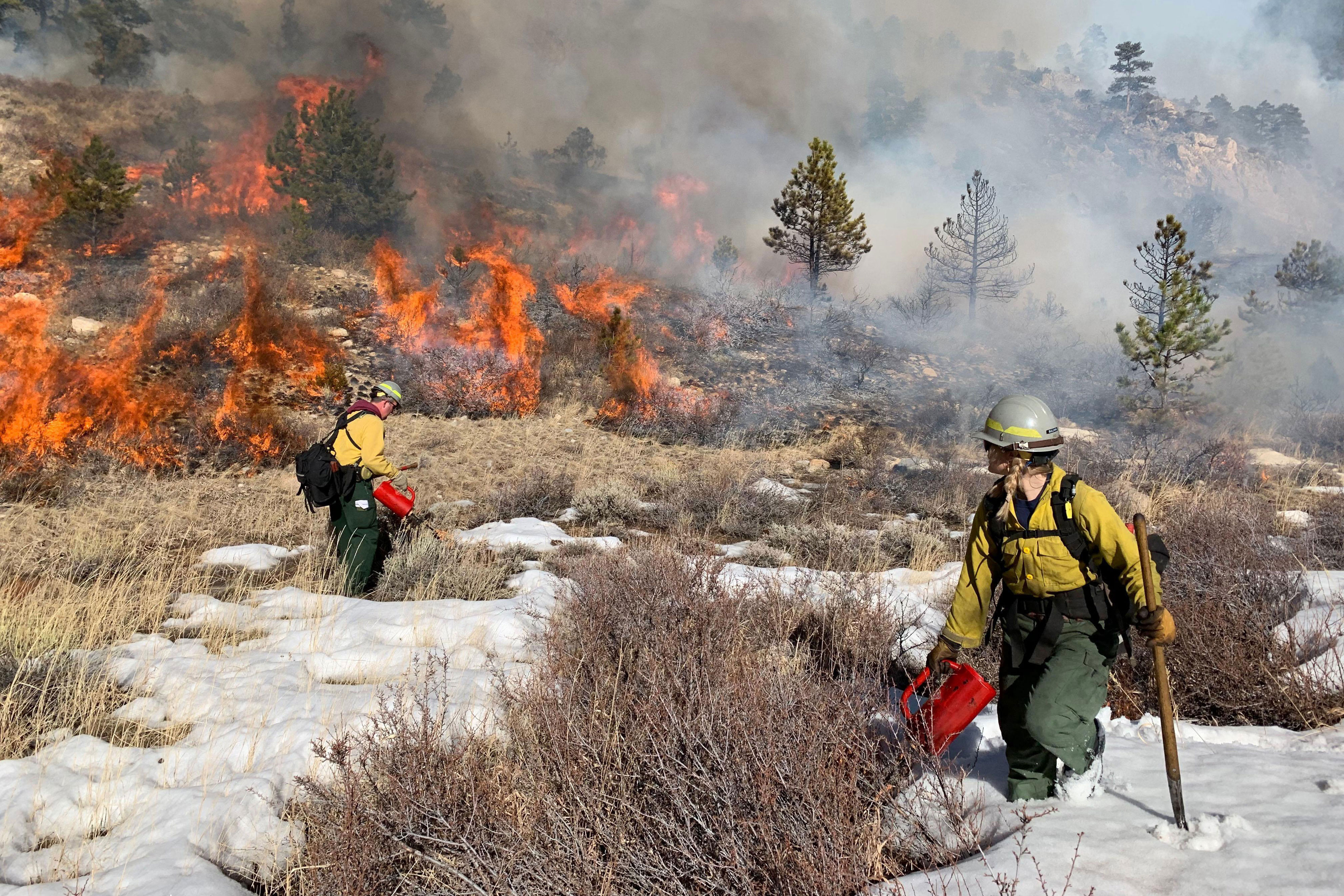<p>Firefighters from Larimer County Emergency Services joined U.S. Forest Service firefighters on the Bighorn Sheep Prescribed Burn ion the north side of the Poudre Canyon near the Roaring Creek Trailhead, March 5, 2019.</p>