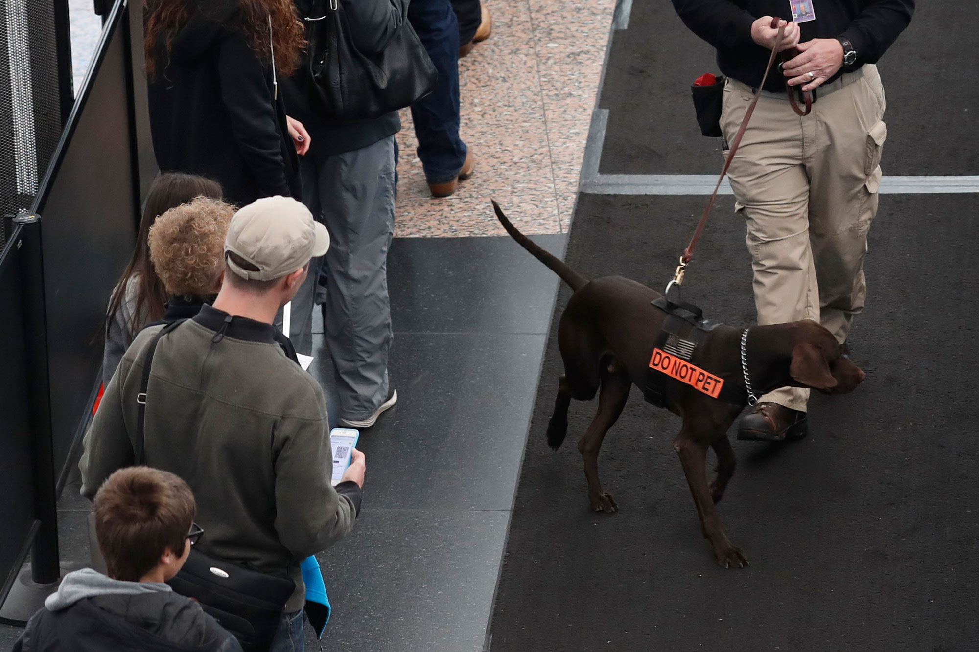 A security officer guides his dog along a long line of travelers waiting at a checkpoint in Denver International Airport early Wednesday, Nov. 23, 2016, in Denver.