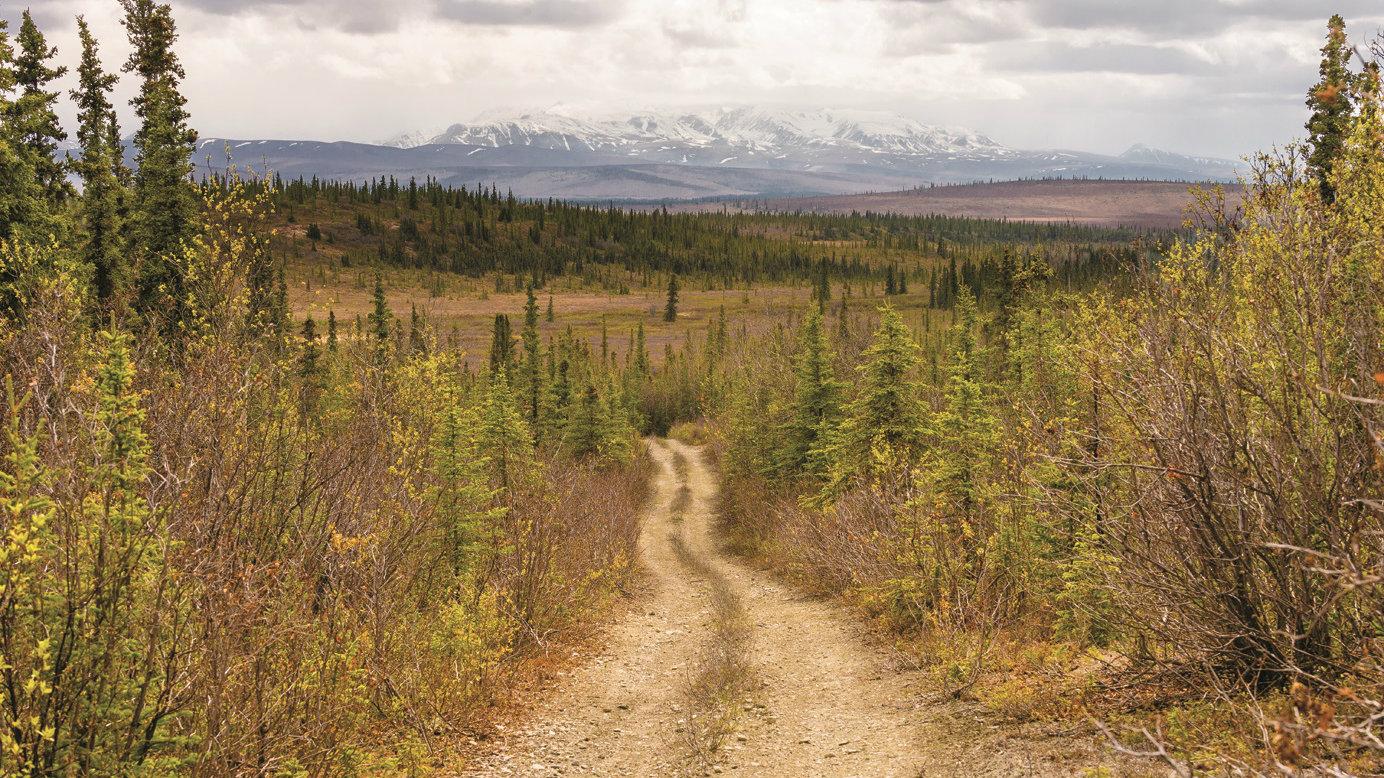 Photo: Into the Wild Stampede Trail in Alaska | Colorado ...
