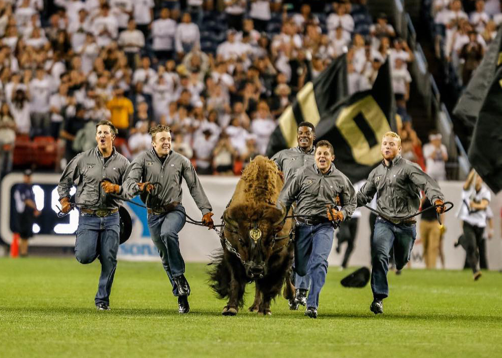 Runner Dylan Bernstein sprints along Ralphie's right shoulder at Folsom Field.