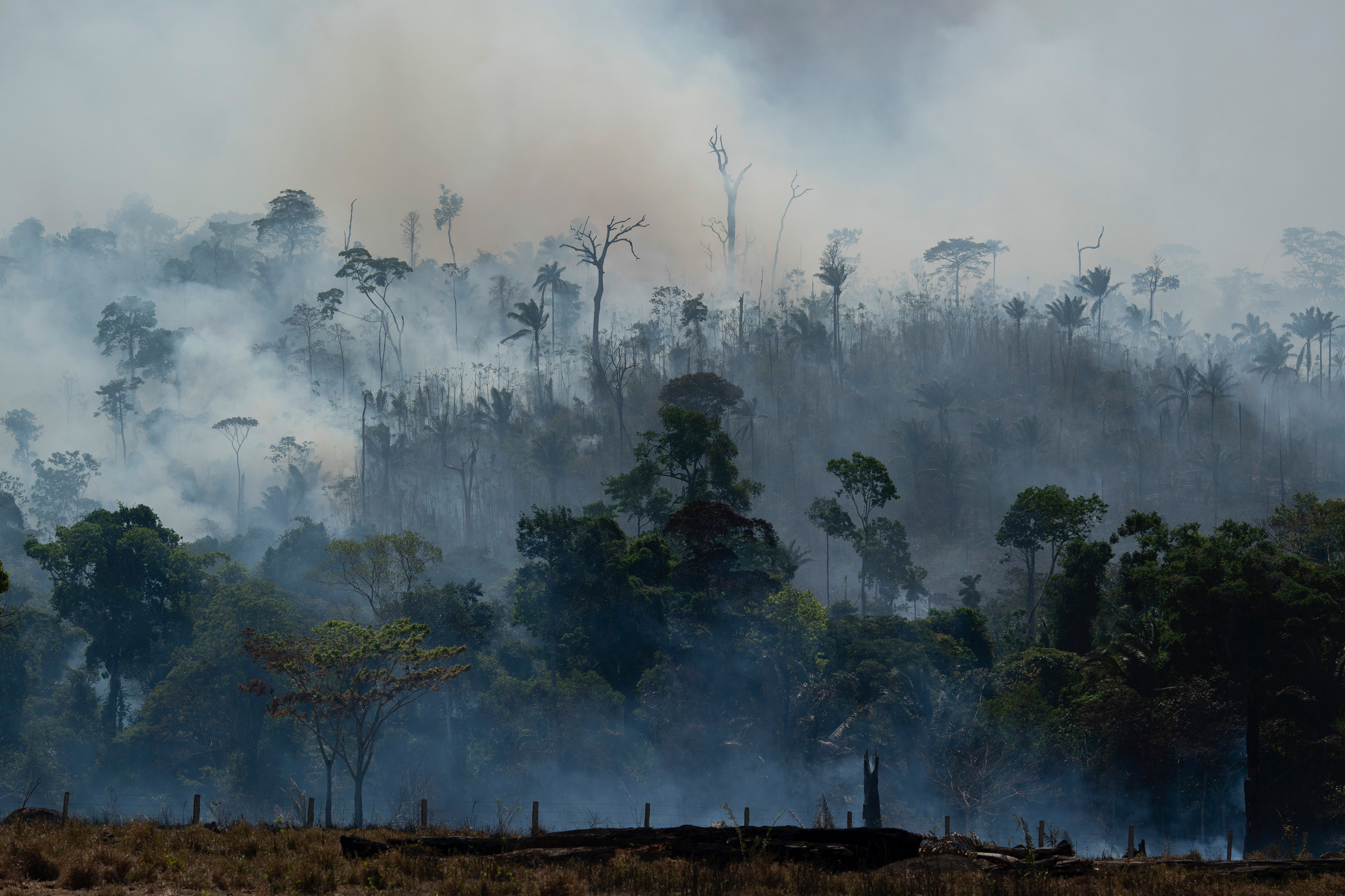 Fire consumes the Amazon rainforest in Altamira, Brazil, on Tuesday, Aug. 27, 2019. Fires across the Brazilian Amazon have sparked an international outcry for preservation of the world's largest rainforest.