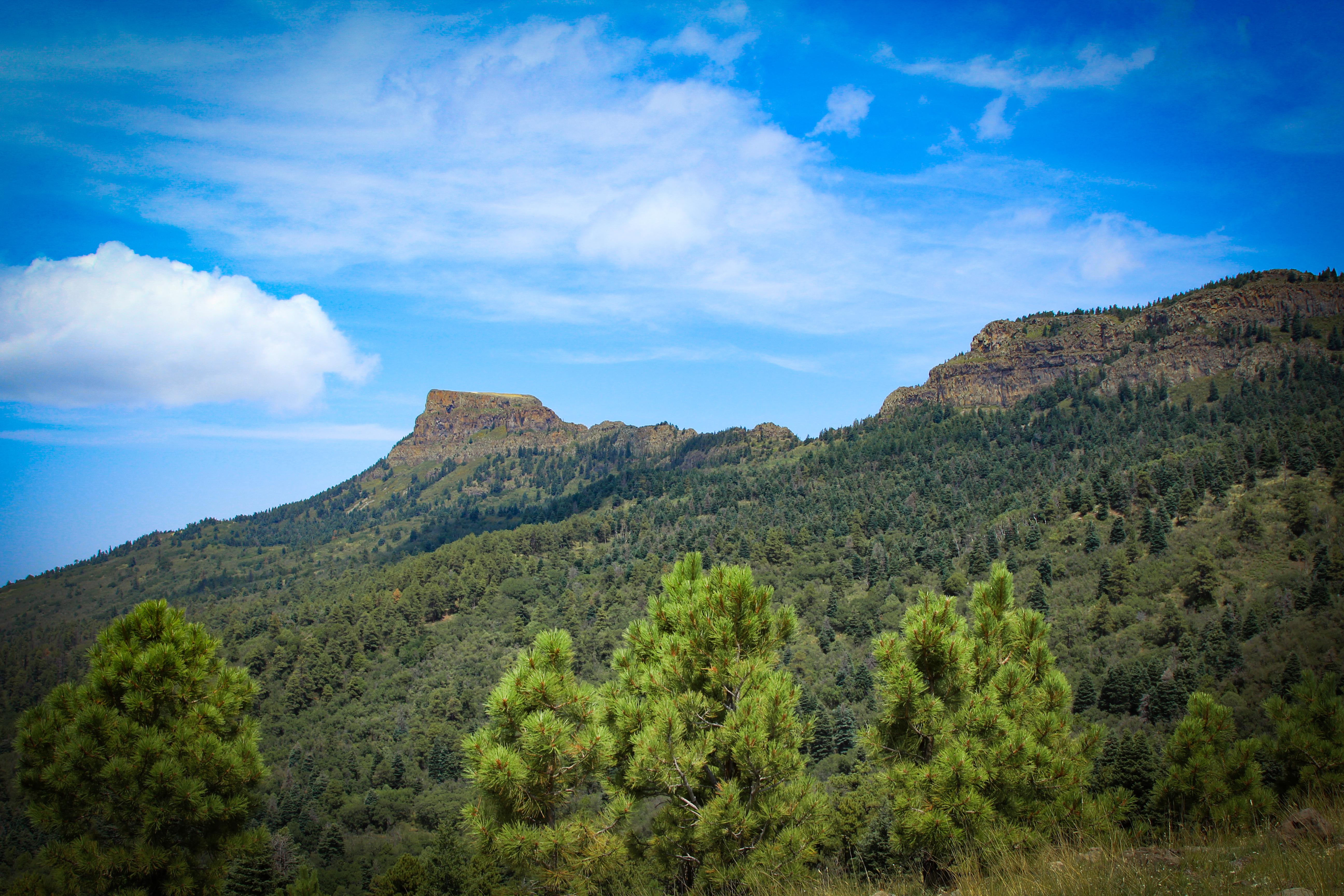 Fisher Peak near Trinidad