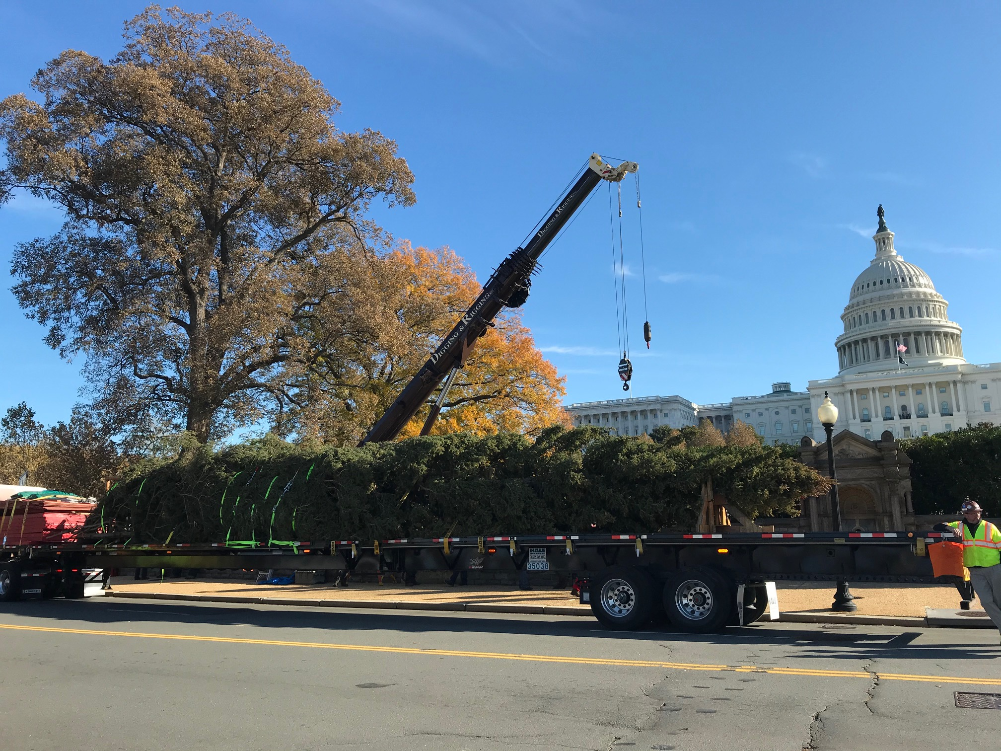 The U.S. Capitol Tree arrives at the western lawn of the U.S. Capitol Building on Nov. 25, 2019. The 60 ft. Blue Spruce comes from Carson National Forest.