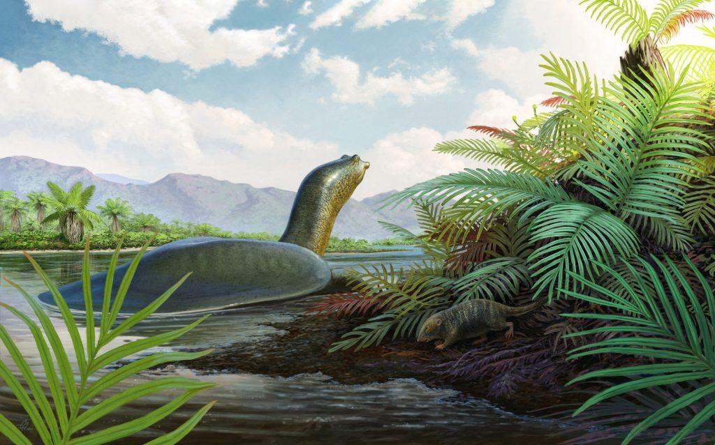 Artist rendering of the fern world