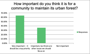Last year, the city of Colorado Springs conducted a survey as part of the Urban Canopy Assessment. This chart shows how the public responded. Most people who participated said they believe it's important for the city to maintain its urban forest. The Urban Forest Management Plan is the next step in this process.