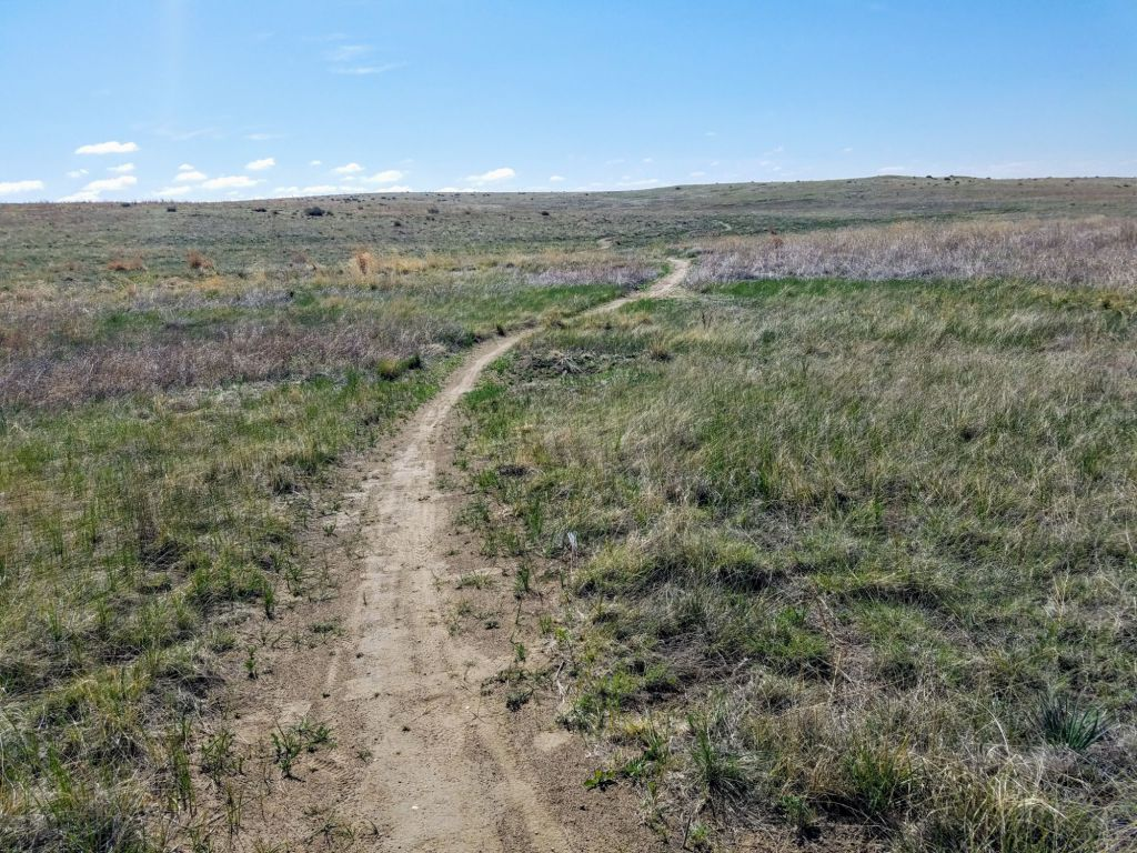 Bluestem Prairie Open Space includes 650 acres of prairie near Big Johnson Reservoir.