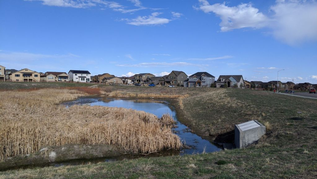 An expansive wetland with houses in the background, a blue sky with scattered clouds overhead.