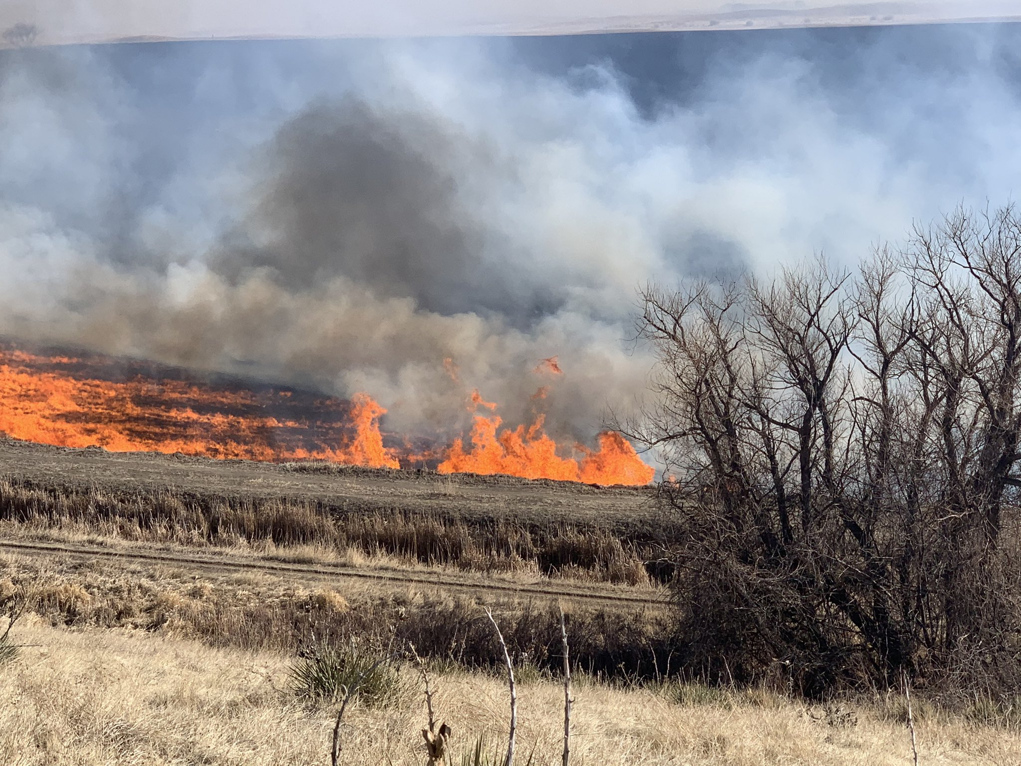 A 100-acre grass fire started near Fox Hollow Golf Course and Bear Creek Lake State Park in Lakewood on Sunday, Feb. 7, 2020.