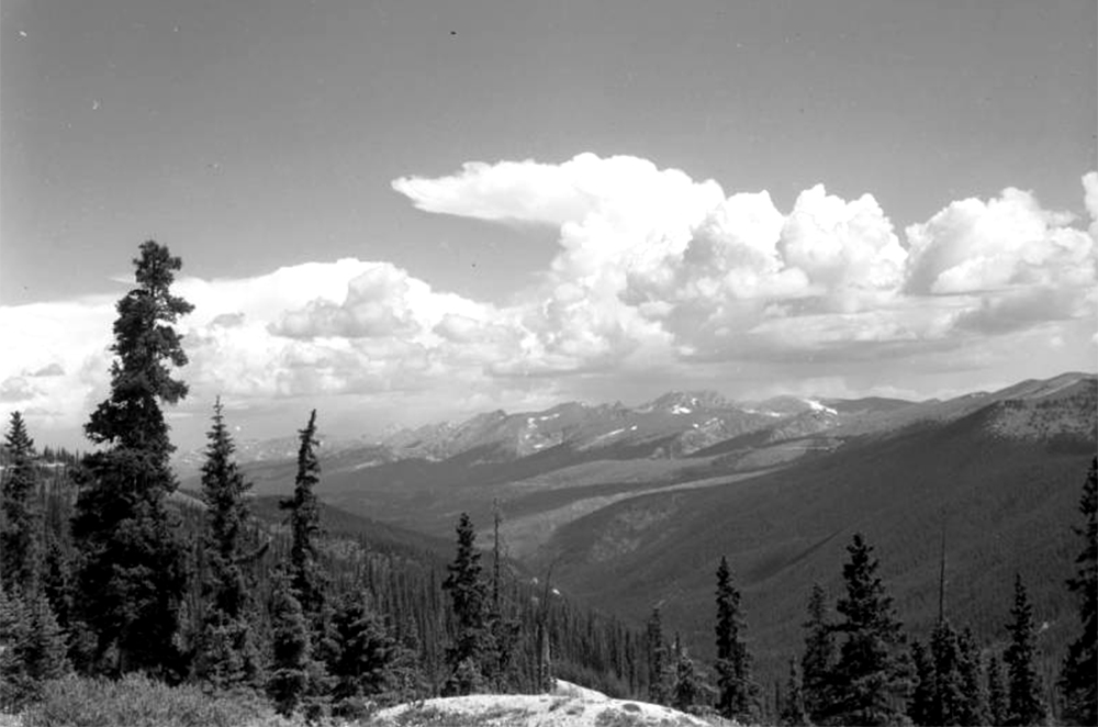 Pine trees stand on a hillside in the foreground in this view looking north toward a ridge of mountains in the distance from Berthoud Pass on the border of Clear Creek and Grand counties in Colorado. Small patches of snow are on the mountains in the distance. Cumulus clouds form a thunderhead anvil in the distance. Between 1935 and 1950. (Donald Kemp/Denver Public Library/Western History Collection/K-88)five points; historic; denver public library; dpl; archive; archival; denverite