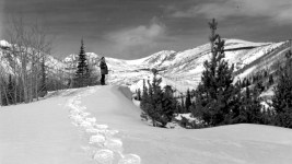 An unidentified man stands in the background on a snow-covered ridge in Jasper Basin, west of Eldora in Boulder County, Colorado. Between 1935 and 1950. (Donald Kemp/Denver Public Library/Western History Collection/K-54)  five points; historic; denver public library; dpl; archive; archival; denverite