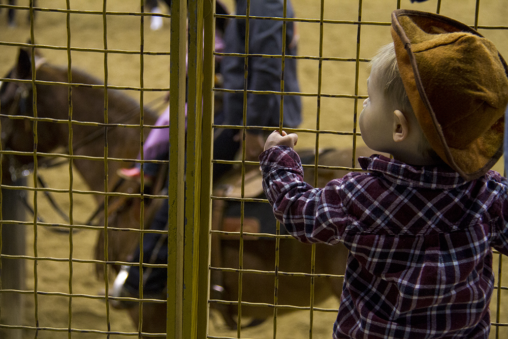 One-year-old Owen Garrett watches horses trot by before the CMSA Cowboy Mounted Shooting competition. National Western Stock Show. Jan. 8, 2016. (Kevin J. Beaty/Denverite)  national western stock show; nwss; national western center; cowboy; kevinjbeaty; denver; denverite; colorado;