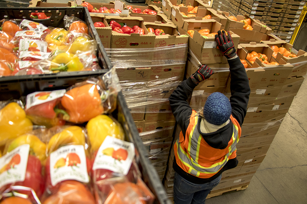 Dana Van Daele works on palates of rejected vegetables ready for redistribution. We Don't Waste picks up rejected produce from Suntastic, a grower that distributes to grocery stores, Dec. 18, 2017 (Kevin J. Beaty/Denverite)  denver; colorado; denverite; food insecurity; food; sustainability;