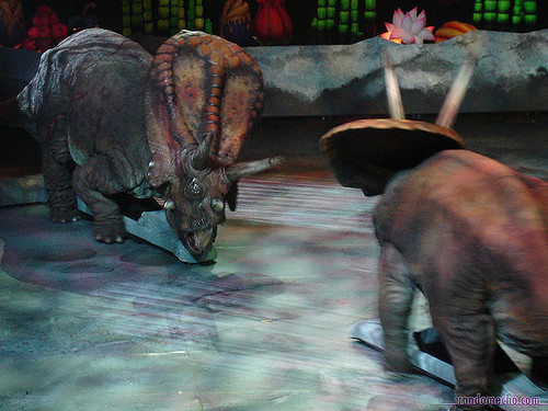 Recreations of torosaurus for something called Walking with Dinosaurs. (Soon/Flickr/Creative Commons)