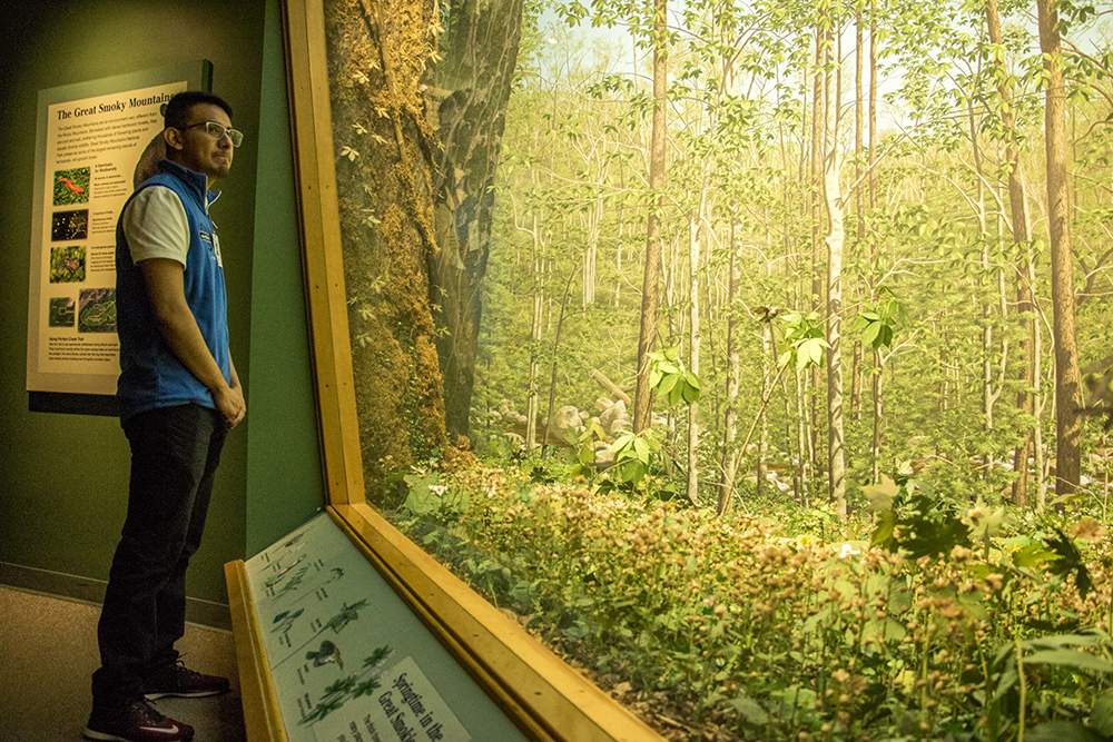 DMNS ambassador Yovani Carrillo peers into a diorama that may or may not contain a tiny hidden gnome. Denver Museum of Nature and Science, Jan. 3, 2017. (Kevin J. Beaty/Denverite)  gnomes; dmns; denver museum of nature and science; denverite; kevinjbeaty; denver; colorado;