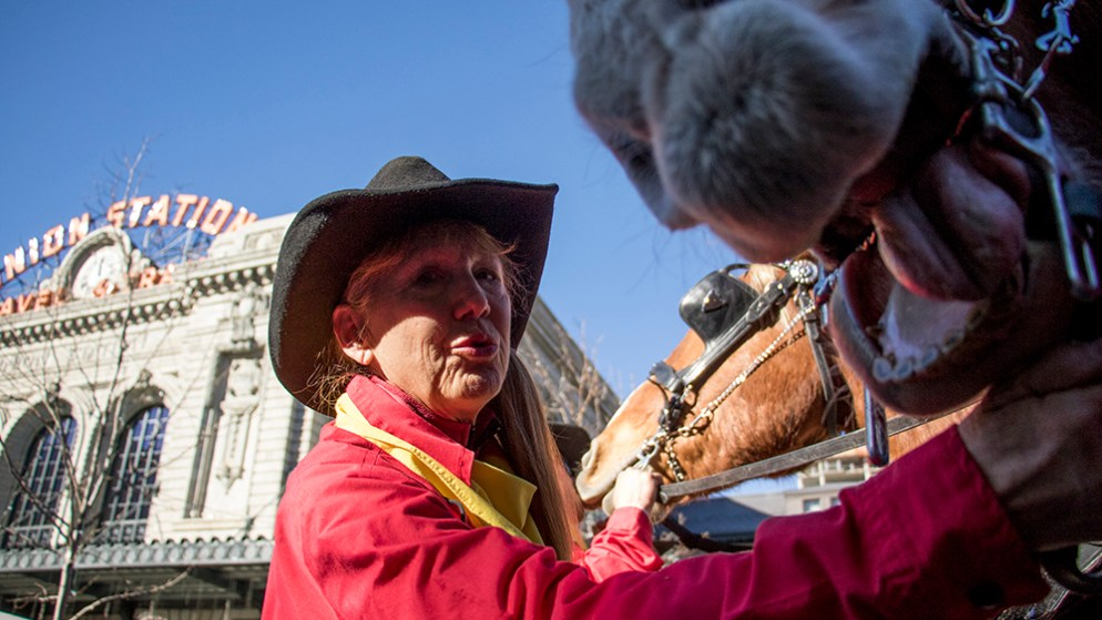 Sandy Pfeiffer sings to Jerry the horse to keep him calm before the parade begins. The 112th National Western Stock Show begins with a parade through downtown Denver, Jan. 4, 2018. (Kevin J. Beaty/Denverite)  national western stock show; nwss; parade; denver; denverite; colorado; kevinjbeaty;