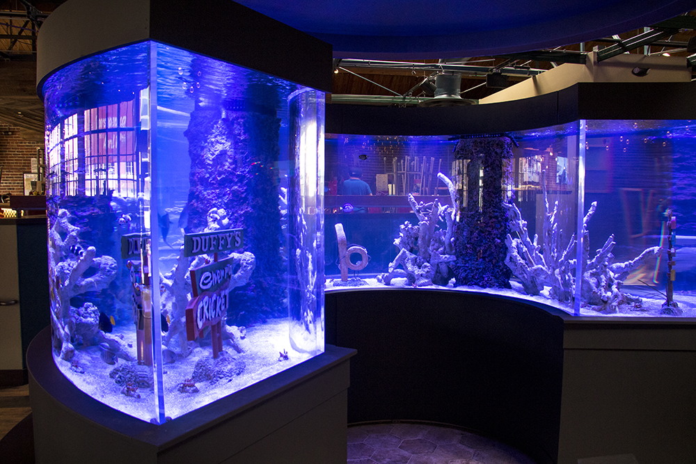 A large fishtank at the Cherry Cricket on Blake Street, which is nearly ready to open, April 16, 2018. (Kevin J. Beaty/Denverite)  food; restaurants; nightlife; bars; denver; denverite; kevinjbeaty; colorado; downtown; ballpark;