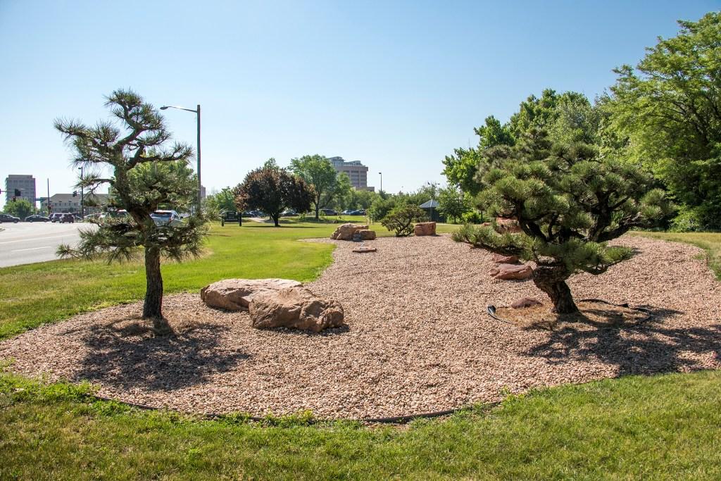 Trees donated by the city of Takayama, Japan, in Belcaro's City of Takayama Park, June 13, 2018. (Kevin J. Beaty/Denverite)