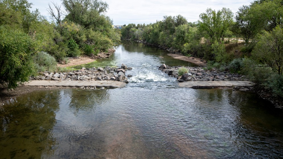The South Platte River between Denver's Overland and Ruby Hill neighborhoods, Sept. 17, 2019. (Kevin J. Beaty/Denverite)