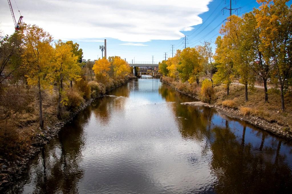 Autumn colors pop along the South Platte River, Oct. 26, 2019. (Kevin J. Beaty/Denverite)