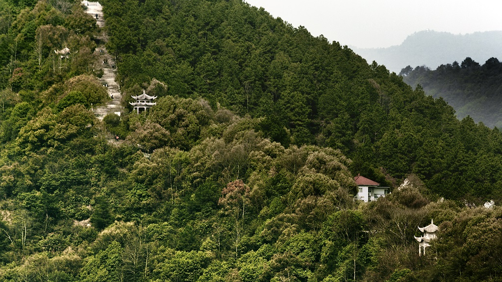 """A still from """"Dwelling In The Fuchun Mountain.""""  (Courtesy DFS)"""