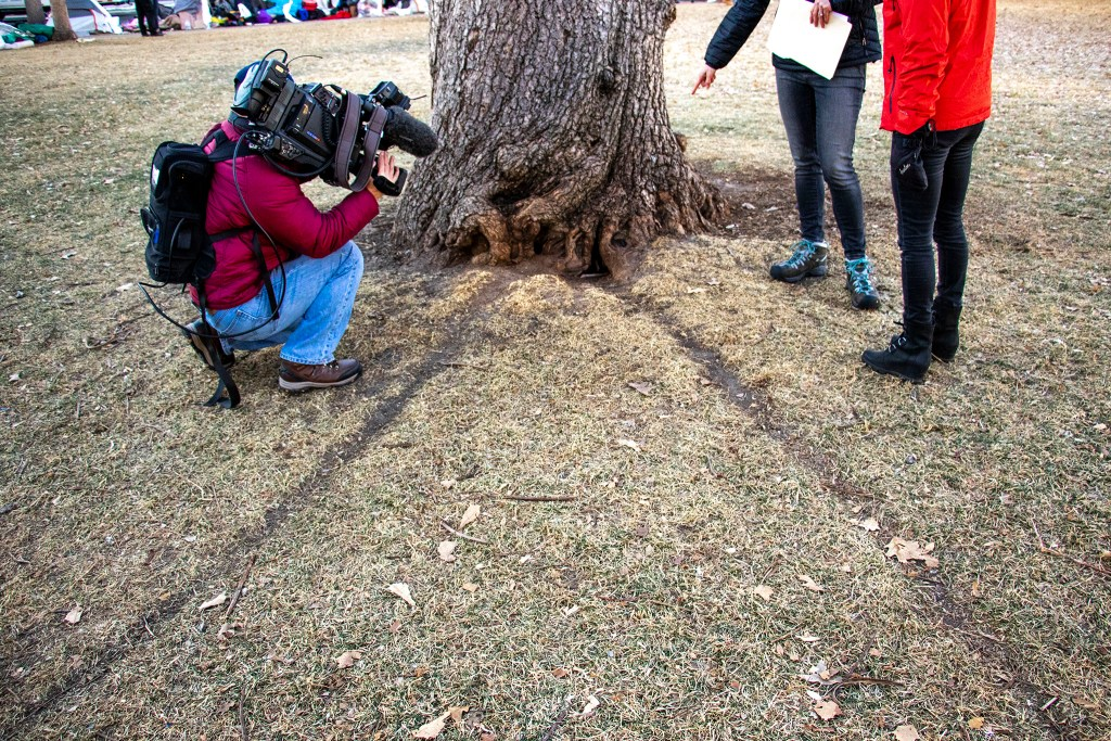 Holes and trails that Denver Department of Public Health's Danica Lee said are evidence of rats in Lincoln Memorial Park, Jan. 15, 2020. (Kevin J. Beaty/Denverite)