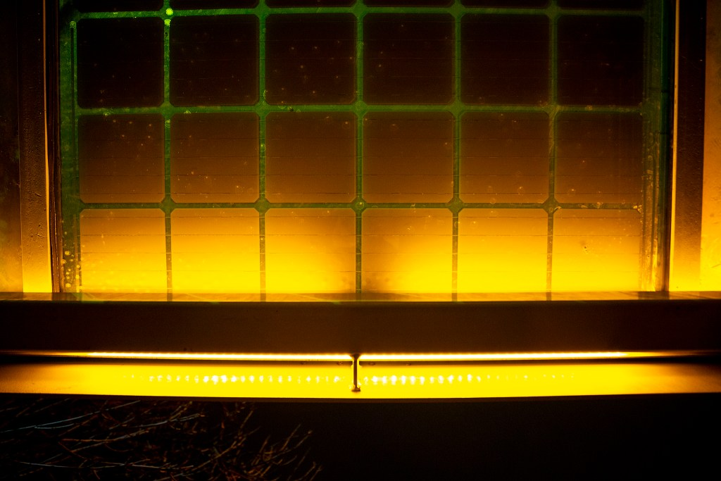 Solar panels seen from inside an illuminated bus shelter on West Colfax Avenue, March 12, 2020. (Kevin J. Beaty/Denverite)