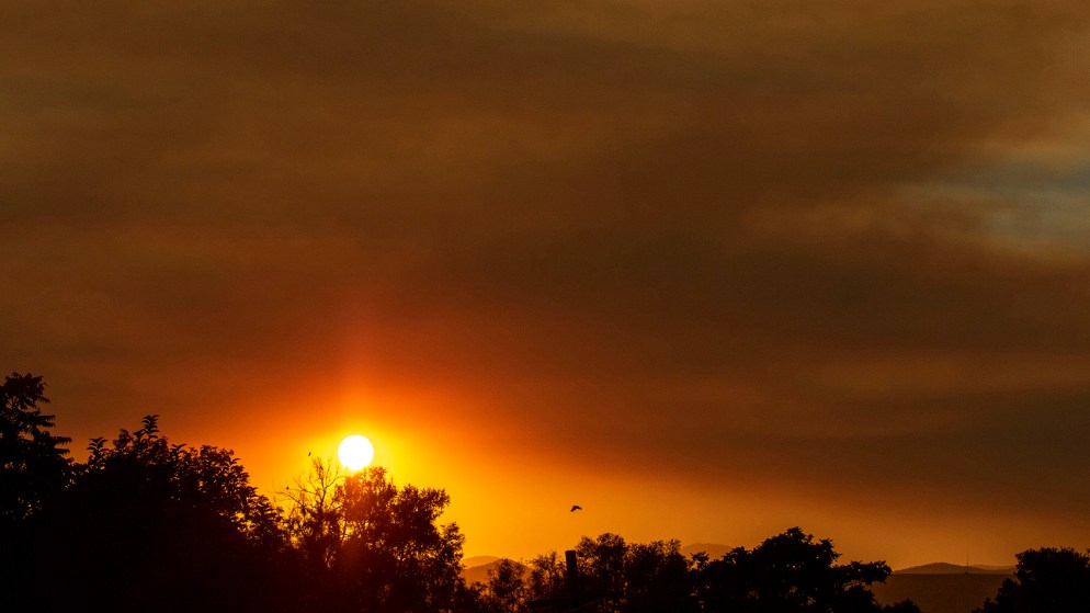 A wildfire sunset over Denver's Mar Lee neighborhood. And a bird. Oct. 1, 2020.
