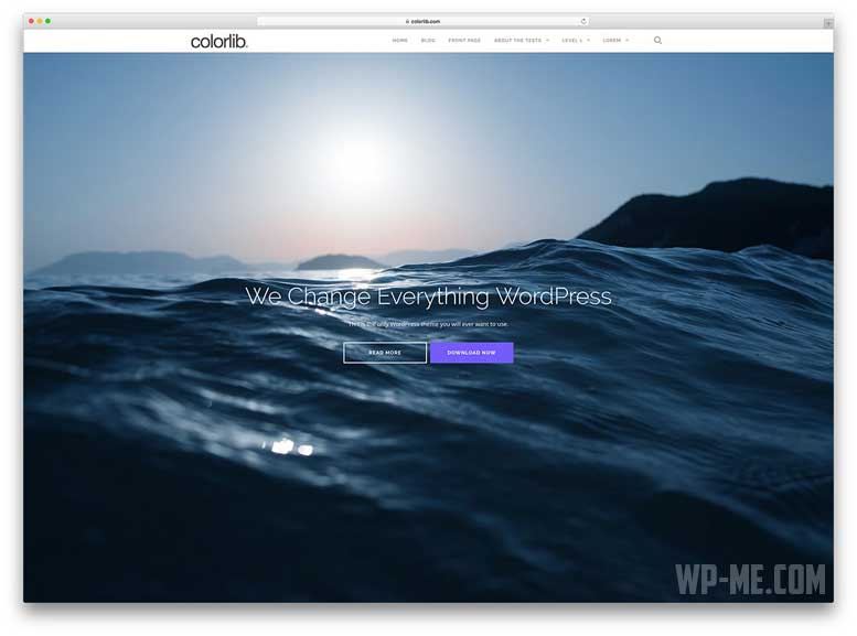 Shapely Free WooCommerce WordPress Theme