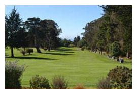 golf2013