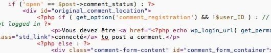 Traduire Thème WordPress - Code