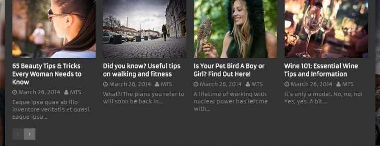 Exemple de menu personnalisé avec les vignettes et méta données des articles grâce au plugin WordPress WP Mega Menu de MyThemeShop