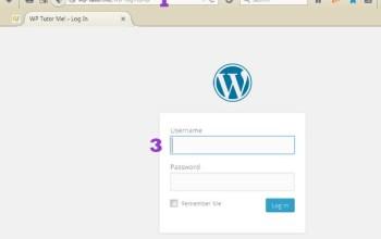 WordPress Login Problems