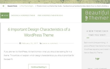 New Site About WordPress Themes