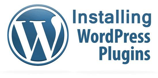 Installing a WordPress Plugin