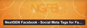 nextgen-facebook-social-meta-tags-for-facebook-google-pinterest-twitter-more