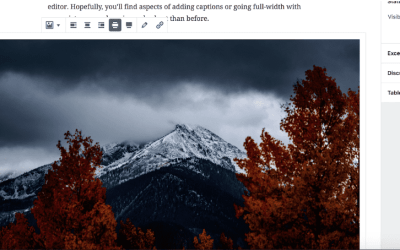 Adding an Image in Gutenberg