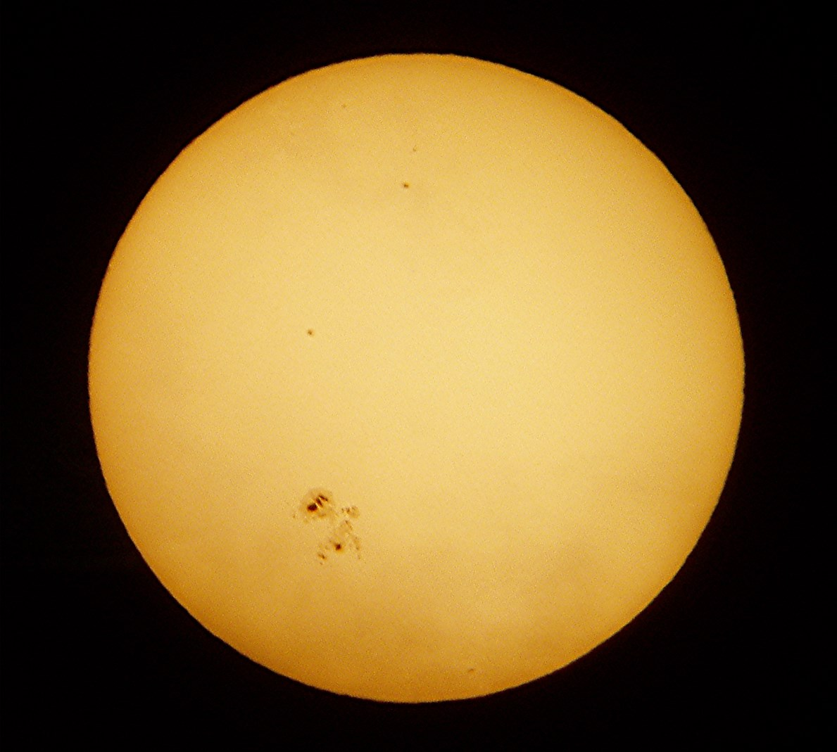 Sunspot Group AR 12192 of October 25, 2014. It was the largest sunspot in 24 years. Olympus Digital Camera. Photo Credit Dan Pedan