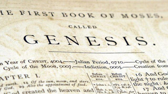 Imagini pentru GENESIS BIBLE