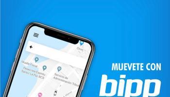 ¿Cómo ser conductor de la app Bipp México?